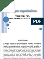 Diagnostico Riesgos-Ergonomicos-y-Psicosociales-pdf