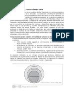ANTECEDENTES DE LA PRODUCCIÓN MÁS LIMPIA.docx