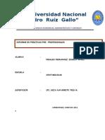145951157-Informe-Final-de-Pacticas.docx