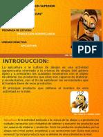 CLASES DE APICULTURA 2019_primera clase terminada