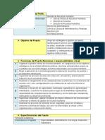 311526942-Gerente-de-Recursos-Humanos.pdf
