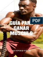 Muscle Gain Guide Workout guide ES
