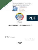 Tudosoiu Andrei - Terminale intermodale proiect.pdf