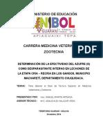 FORMATO_TESINA_TS S.pdf