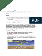Guía de biología 9-02.pdf