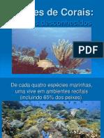 211020532-Recifes-de-Corais