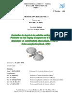 THESE_ KOURRADI (1).pdf