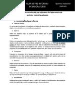 2019_II_QIA_Guia_Pre-InformeLab.pdf