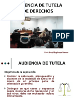 AUDIENCIA DE TUTELA-modulo II.ppt