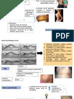 Inspeccion abdomen
