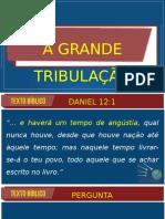 GRANDE TRIBULAÇÃO - PR MARCELO 2020