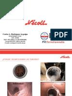 Nicoll - PTF_La Tinguiña.pdf