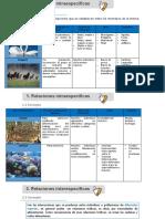 actividades NP PROFUNDIZACION NOVENO (1) (1)