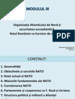 MODULUI III - NATO si S EA, Rolul ROU ca furnizor de S Ian 2020 R.ppt