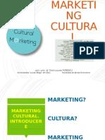 Marketing cultural. Produsul cultural