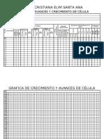 Cuadernillo de CÉLULA DE ADULTOS