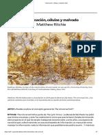 Información, células y maldad _ Art21