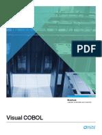 visual_cobol_brochure.pdf