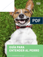 Guia Para Entender Al Perro