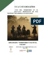 INDEPAZ REGION ARAUCA SARARE 2017.pdf