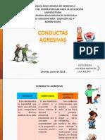 Presentación CONDUCTA AGRESIVA