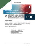 Términos de orientación y planos anatómicos