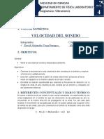 Guía 4 - Velocidad del Sonido (1)
