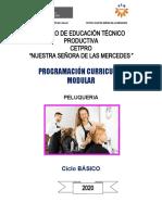 MODELO DE PROGRACION CURRICULAR (1)