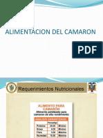ALIMENTACION DEL CAMARON.pptx