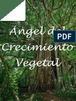 Ángel-del-Crecimiento-Vegetal.pdf
