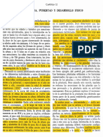 Stone & Church - Pubescencia, Pubertad y Desarrollo Físico (Cap. 11) RESALTADO