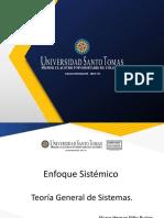 Enfoque Sistemico vf (1).pptx