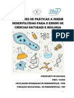 MANUAL AULA PRATICA.pdf