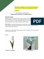FISA DE LUCRU 2-Circulatia la plante