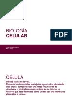 BIOLOGIA_CELULAR.pdf