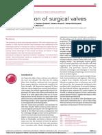 evolution of surgical valves