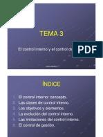 Tema 3 El control interno y el control de gestión