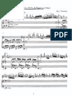 Юджи Такахаси - Le Double de Paganini (флейта + аккордеон)