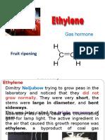 16. Ethylene & Others