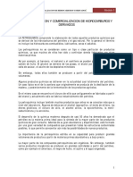CL04__Industrializacion_Comercializacion.pdf