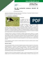 EFECTO ANTAGÓNICO DE Lactobacillus plantarum AISLADO DE