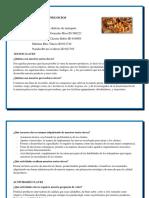 LIENZO DE MODELO DE NEGOCIOS.pdf