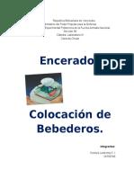 Bebederos TRABAJO LABORATORIO.docx