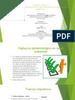 UNIDAD 3_TAREA 5_ Epidemiologia ambiental (1)