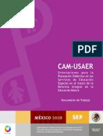 CAM-USAER ORIENTACIONES PARA LA PLANEACIÓN DIRÁCTICA SERVICIOS DE EDUCACIÓN ESPECIAL PSICO EDUC.pdf