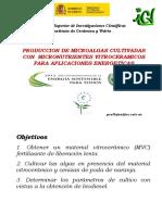 1-MicroAlgas-2012-Pio3.ppt
