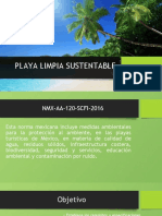 Playa limpia sustentable