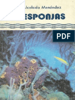 FE-241-Alc-E Las esponjas