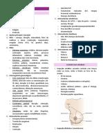 ambulatorio saude da mulher 1