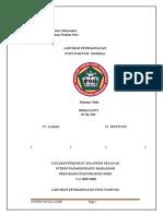 LP POST PARTUM NORMAL PNC